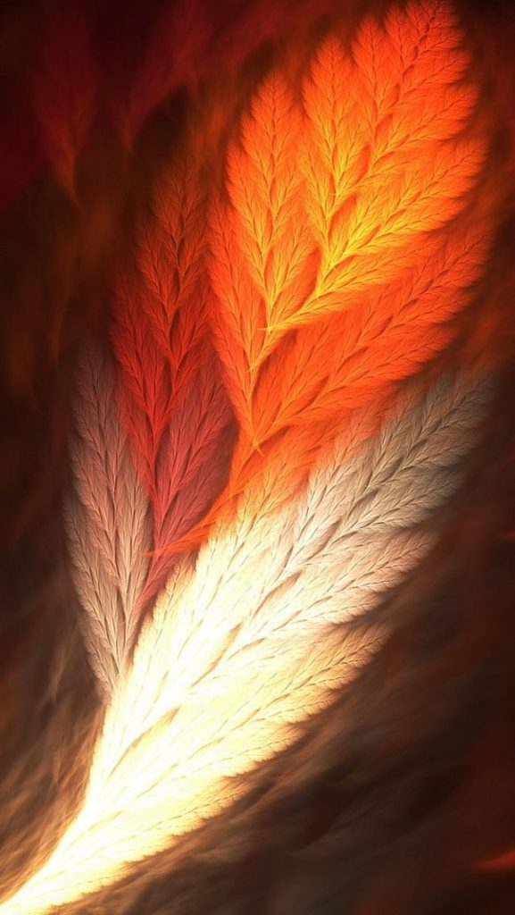 B-featherart-ToUXxsE-PIC-MCH043010-577x1024 Artistic Wallpapers For Mobile 34+