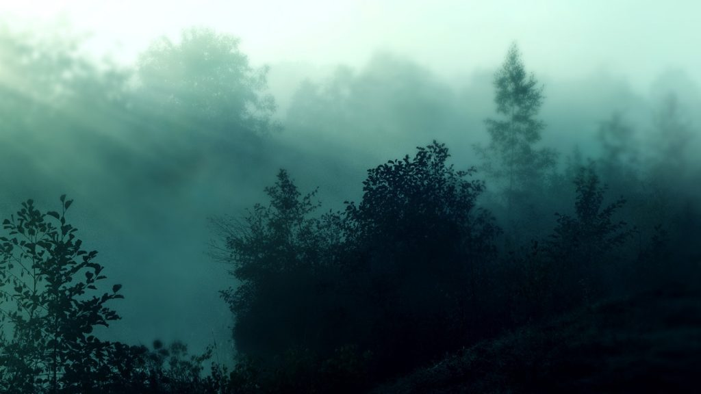 Foggy-forest-nature-hd-wallpapers-PIC-MCH064529-1024x576 Fog Wallpaper Full Hd 31+