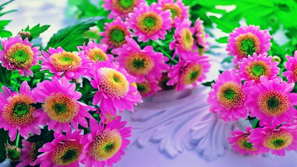 Pink-Flowers-Beautiful-HD-Wallpaper-PIC-MCH095213-1024x576 Pink Hd Wallpapers Widescreen 32+