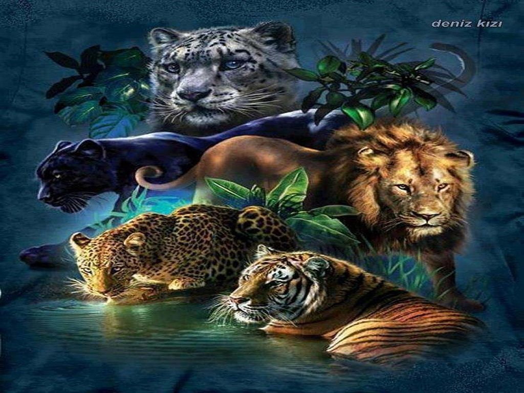 big-cats-wallpapers-PIC-MCH046470-1024x768 Big Cat Wallpapers Free 33+