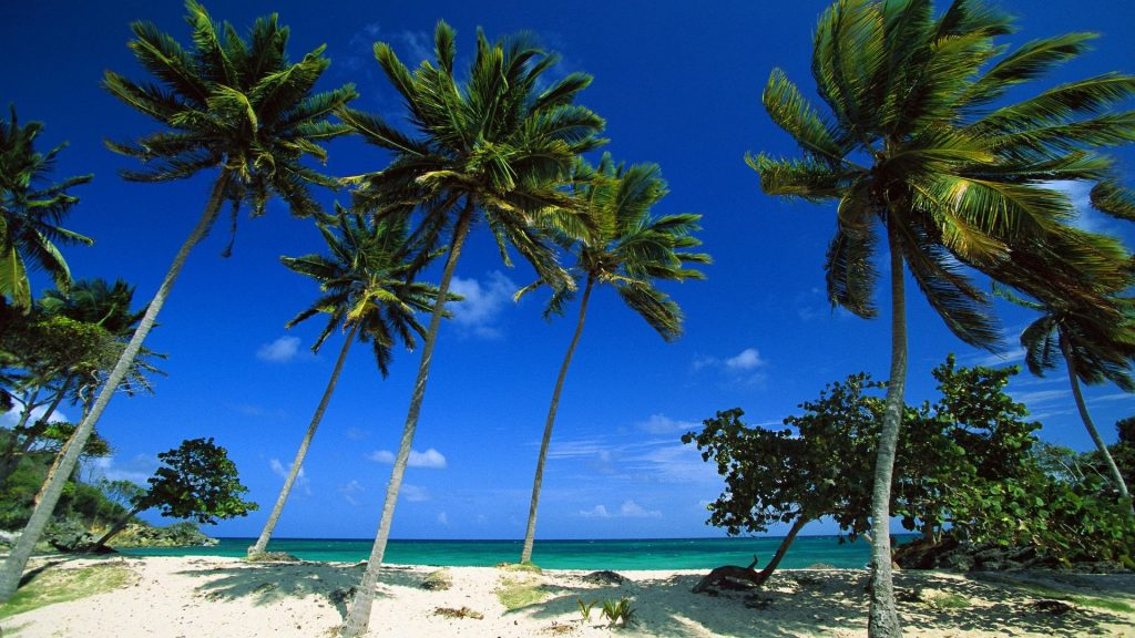download-free-dominican-republic-wallpapers-x-PIC-MCH036633-1024x576 Dominican Wallpaper Free 41+