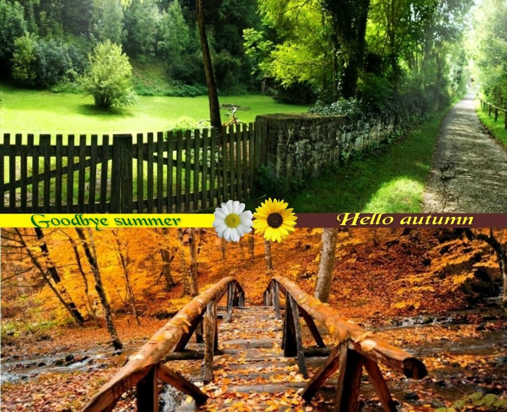 forces-of-nature-summer-autumn-green-yellow-bye-wallpaper-beauty-x-PIC-MCH064651-1024x833 Bye Wallpaper For Mobile 24+
