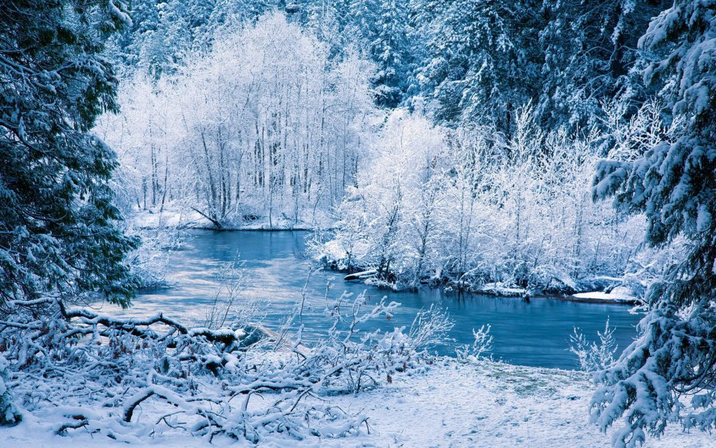 forest-display-good-smells-rivers-landscapes-treeshd-nature-wallpapers-shore-snow-frost-seasonal-wi-PIC-MCH064731-1024x640 Seasonal Wallpaper Free For Desktop 37+
