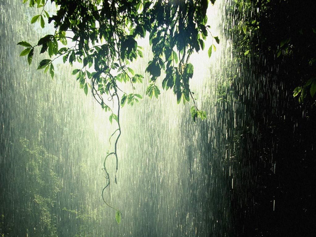 hqdlhmZ-PIC-MCH073986-1024x768 Animated Rain Desktop Wallpaper 42+