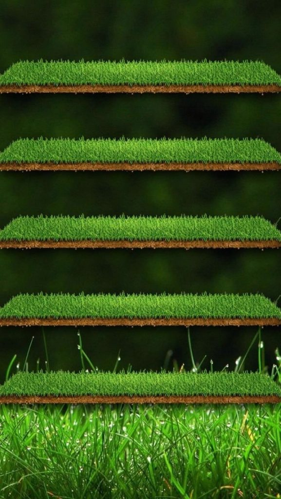 iPhone-Wallpaper-Shelves-Grass-PIC-MCH01292-577x1024 Iphone 5 Wood Shelf Wallpaper 48+