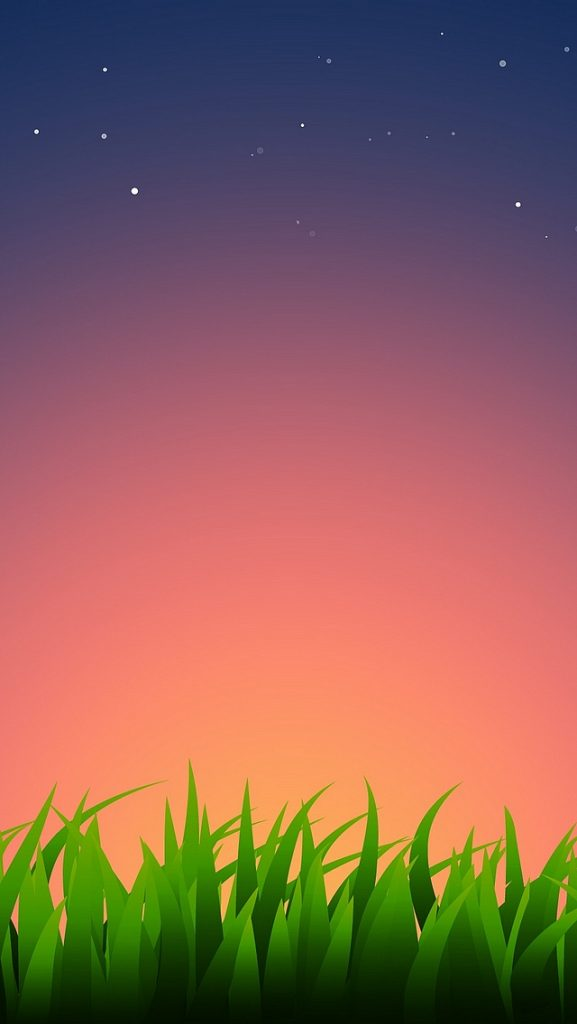 iPhone-Wallpaper-ios-grass-PIC-MCH01230-577x1024 Iphone 5 Shelves Wallpapers Ios 7 23+
