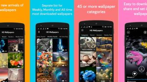 Wallpapers Apps Hd 12+