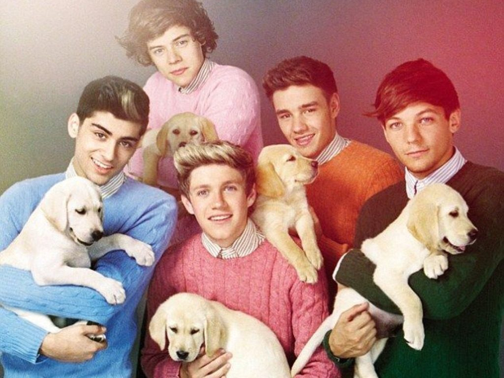 one-direction-wallpaper-PIC-MCH016162-1024x768 One Direction Wallpapers Without Zayn 26+