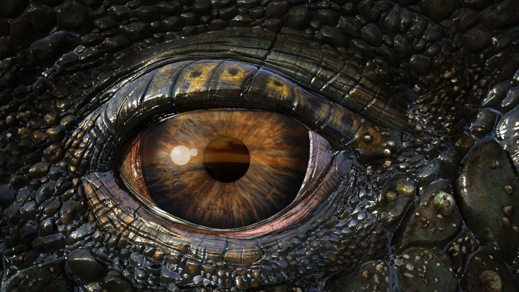 real-dragons-eye-PIC-MCH098034-1024x576 Real Wallpaper 3d 37+
