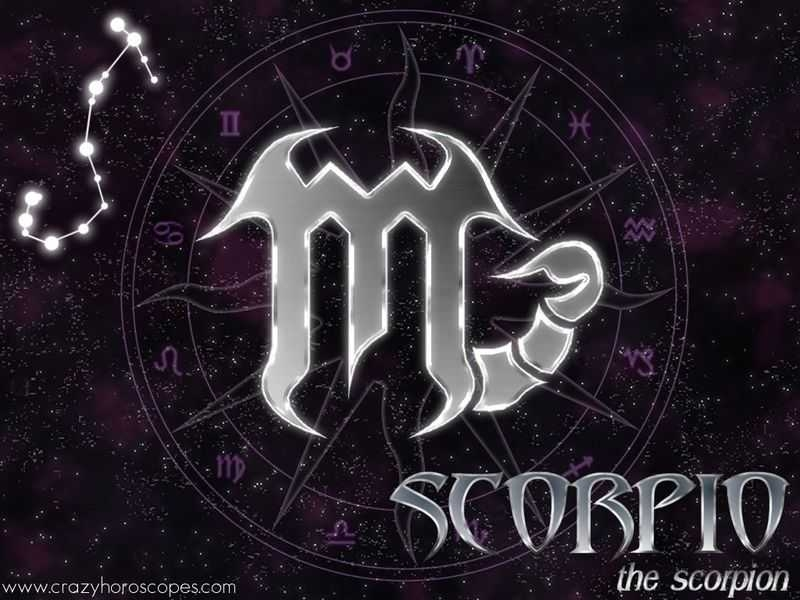 scorpios-images-scorpio-wallpaper-hd-wallpaper-and-background-on-wallpaper-of-scorpio-PIC-MCH0100618 Scorpion Wallpaper Hd 40+