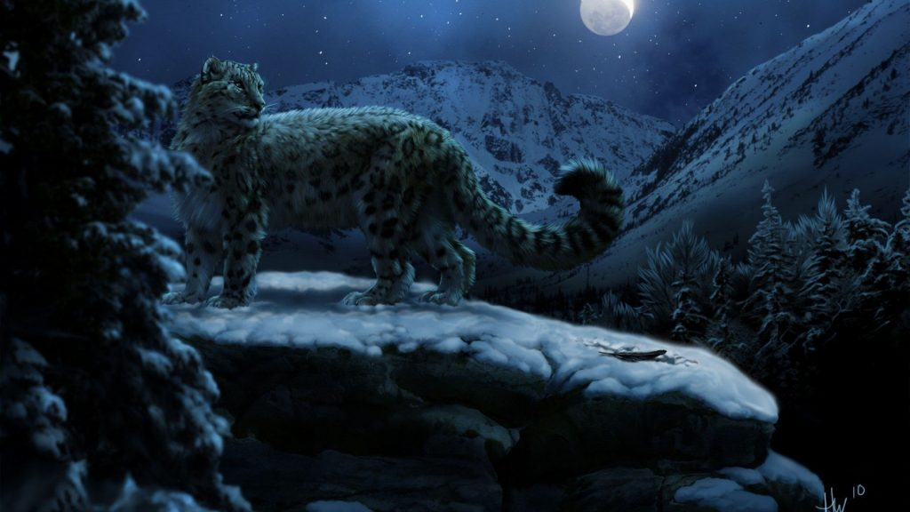 wallpaper-winter-leopards-desktop-artwork-moon-animals-snow-forest-background-animal-reptile-PIC-MCH0112640-1024x576 Big Cat Wallpapers For Desktop 28+