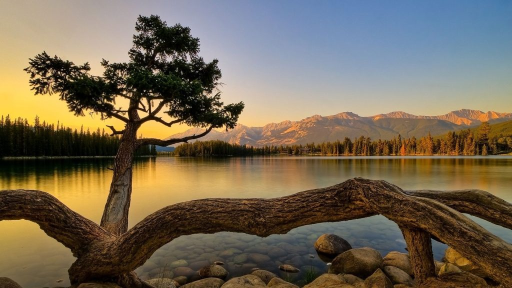 world-nature-full-hd-wallpaper-PIC-MCH0117411-1024x576 Real Wallpaper Free 51+