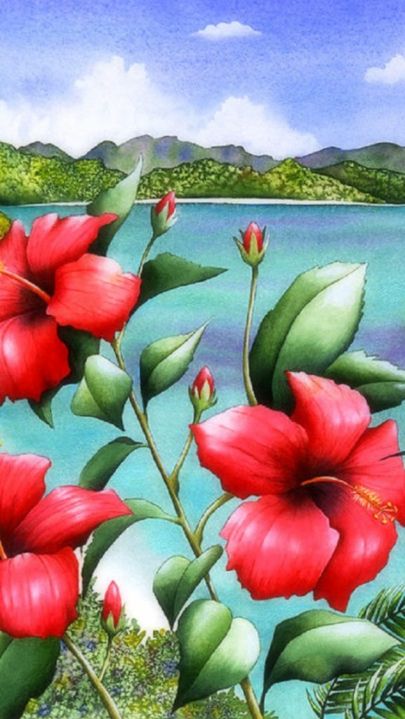 ws-Hummingbirds-Red-Hibiscus-x-PIC-MCH0119137-577x1024 Hibiscus Wallpaper Iphone 19+