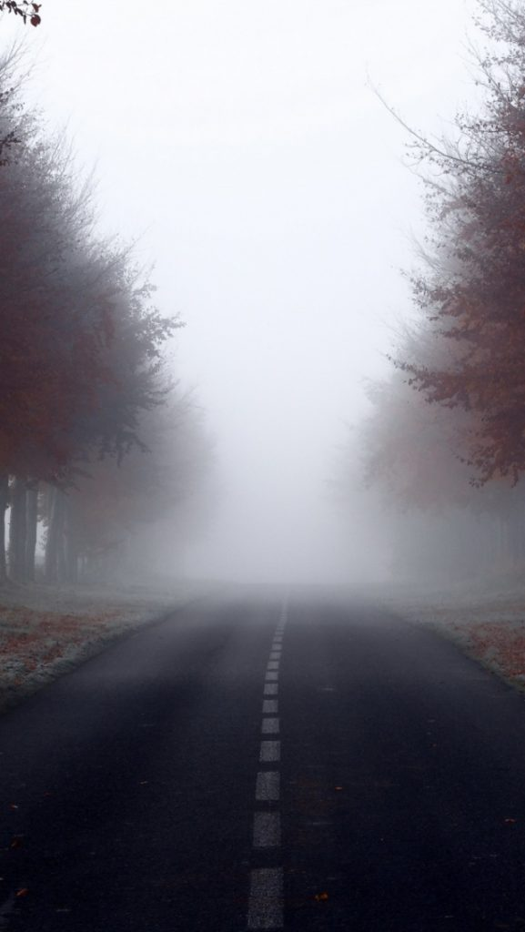 ws-Red-Autumn-Trees-Road-Foggy-x-PIC-MCH0119466-577x1024 Fog Wallpaper Iphone 48+