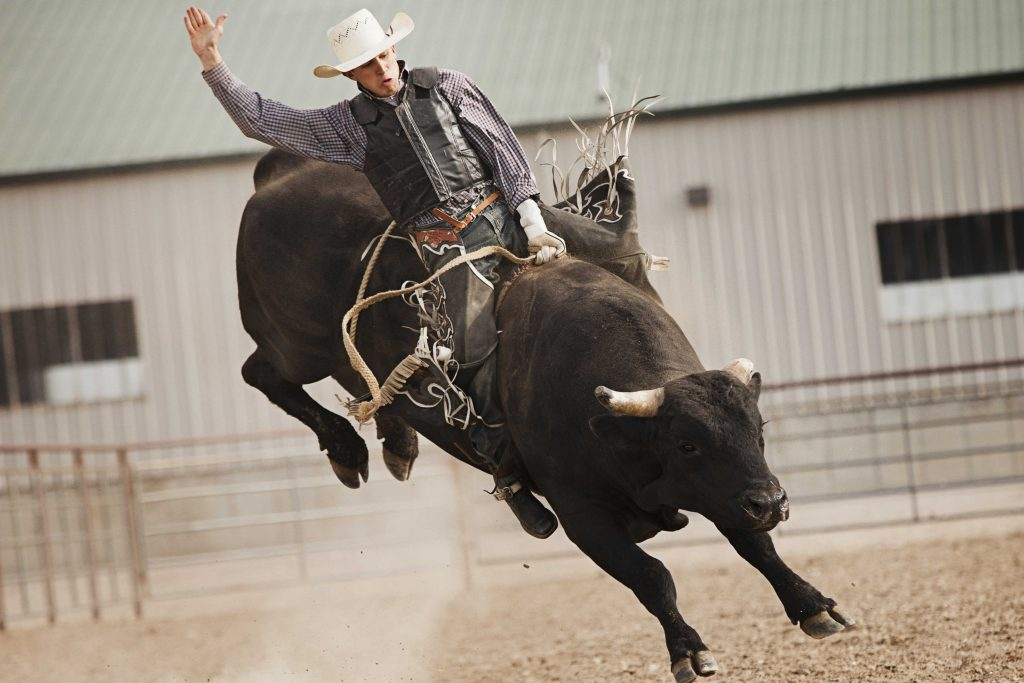 Bull-Riding-Backgrounds-For-Desktop-PIC-MCH050068-1024x683 Bull Wallpapers Free 49+