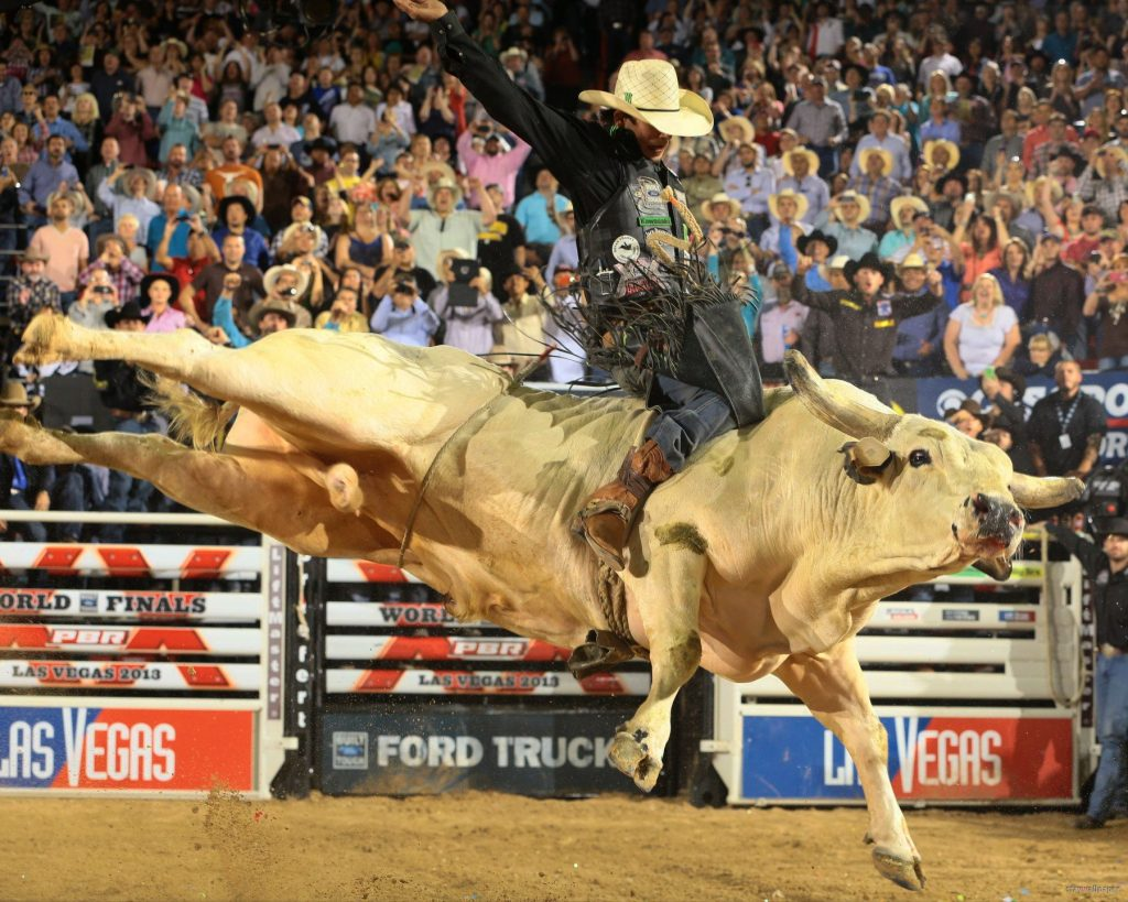 Free-bull-riding-wallpapers-hd-PIC-MCH065008-1024x819 Bull Wallpapers Free 49+