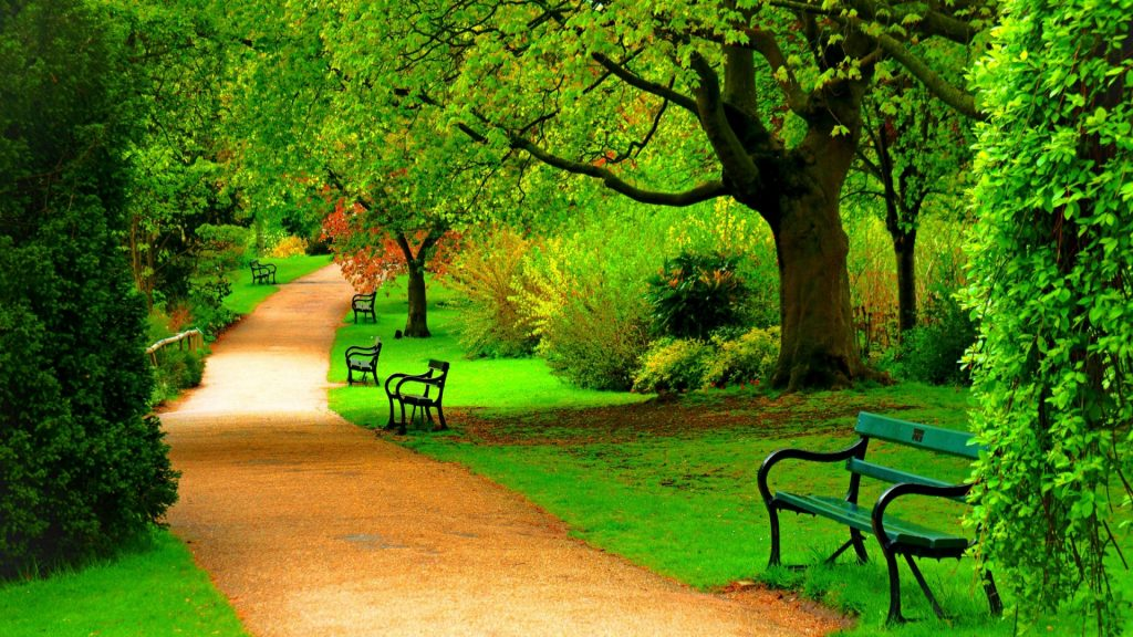 Green-park-trees-nature-beautiful-day-hd-wallpaper-x-PIC-MCH070013-1024x576 Wallpaper Of The Day Hd 48+