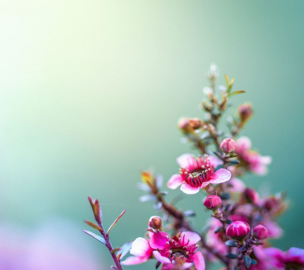 Official-HTC-One-M-Wallpaper-PIC-MCH091947-1024x910 Htc One M8 Wallpaper Apk 19+
