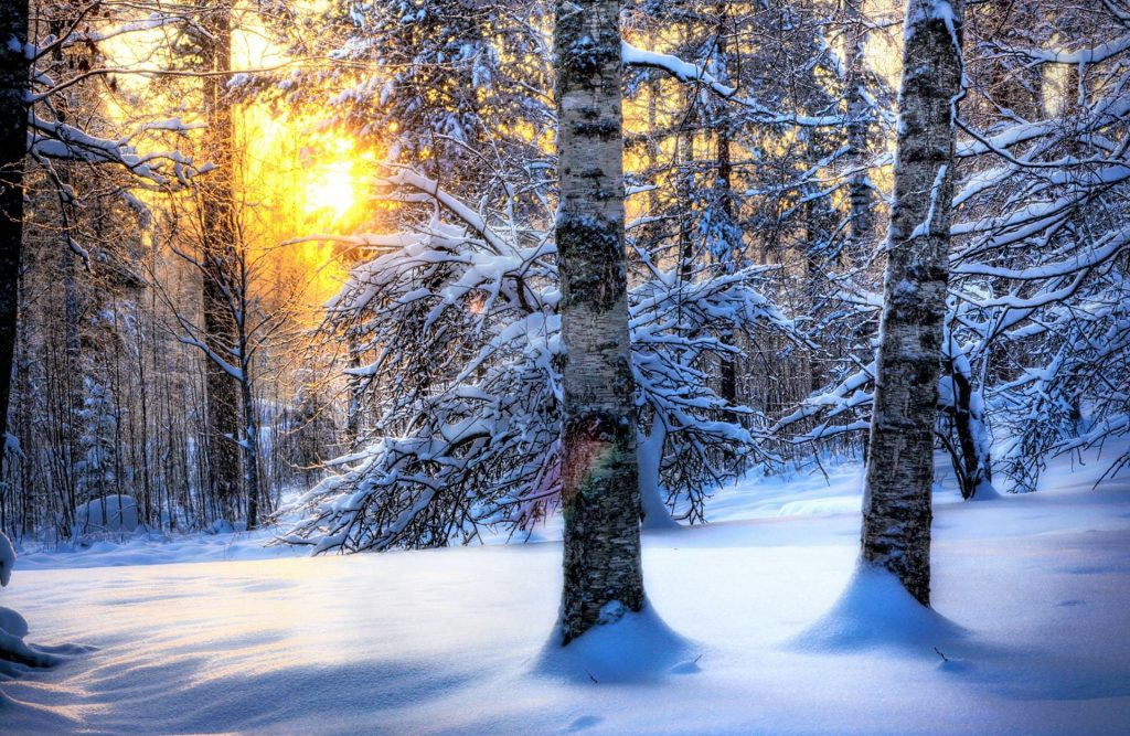 PIC-MCH09918-1024x667 Winter Season Full Hd Wallpapers 43+