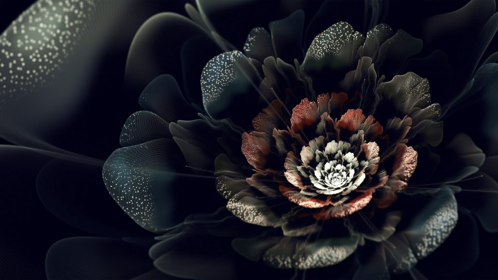 Pictures-black-rose-HD-wallpapers-images-PIC-MCH094874-1024x576 Black Hd Wallpapers 1080p Mobile 38+