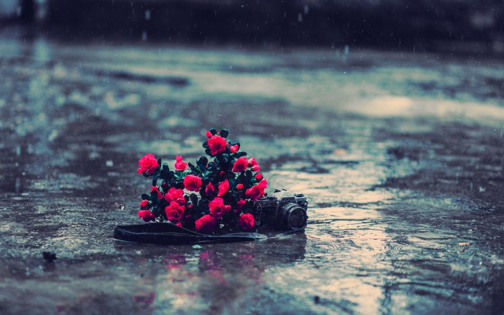 Rain-backgrounds-wallpapers-HD-desktop-wallpapers-high-definition-monitor-download-free-amazing-bac-PIC-MCH097245-1024x640 Rain Wallpaper Definition 45+
