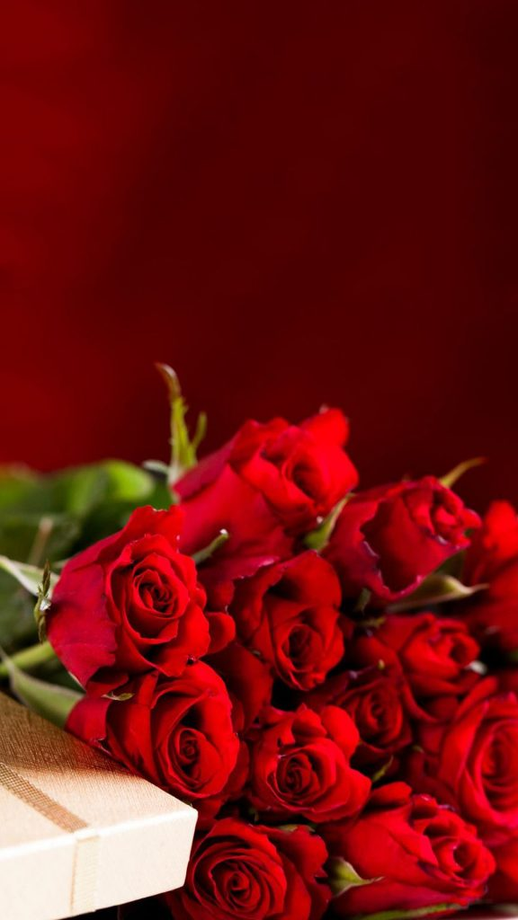 Red-Roses-Bouquet-Valentines-Day-Gift-Android-Wallpaper-PIC-MCH098408-576x1024 Wallpaper Of The Day Android 23+