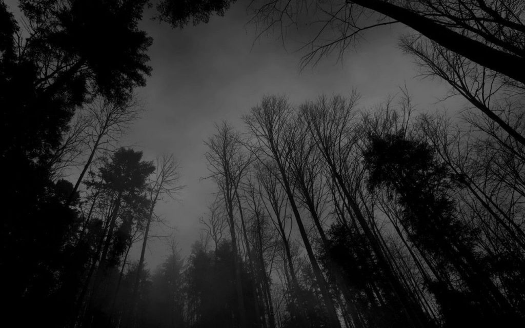 dark-forest-moon-wallpapers-mobile-On-Wallpaper-p-HD-PIC-MCH056405-1024x640 Black Hd Wallpapers 1080p Mobile 38+