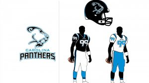 Carolina Panthers Hd Wallpapers 1080p 29+