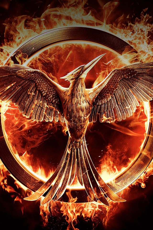freeios.com-apple-wallpaper-hunger-games-fire-iphone-PIC-MCH066088 Mockingjay Wallpaper Ipad 29+
