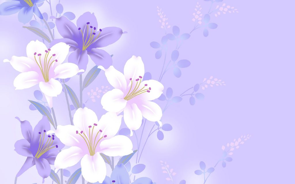purple-flower-white-background-PIC-MCH04172-1024x640 Simple Wallpaper Backgrounds 43+