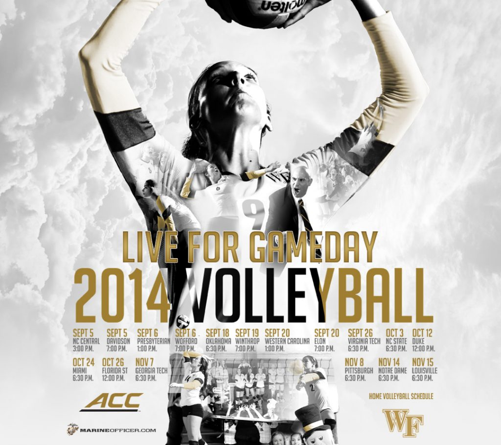 vb-mobile-android-PIC-MCH0109948-1024x910 Volleyball Wallpapers For Your Phone 16+