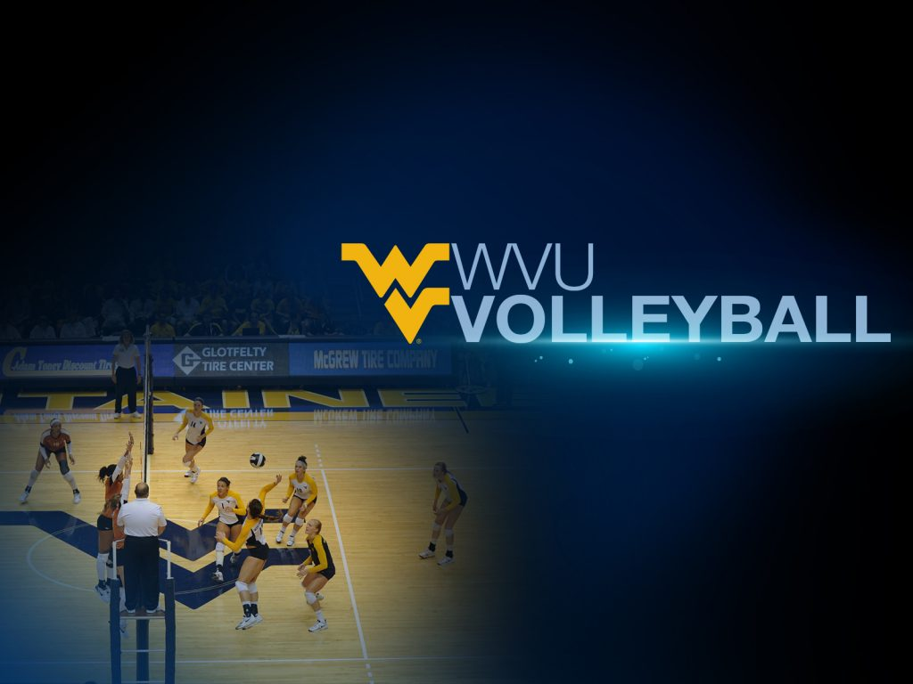 volleyball-PIC-MCH0110598-1024x768 Volleyball Wallpapers For Your Phone 16+