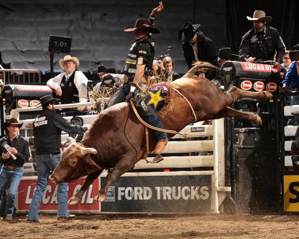 wallpaper.wiki-Wallpapers-HD-Bull-Riding-PIC-WPC-PIC-MCH0114505-1024x819 Bull Wallpapers Free 49+