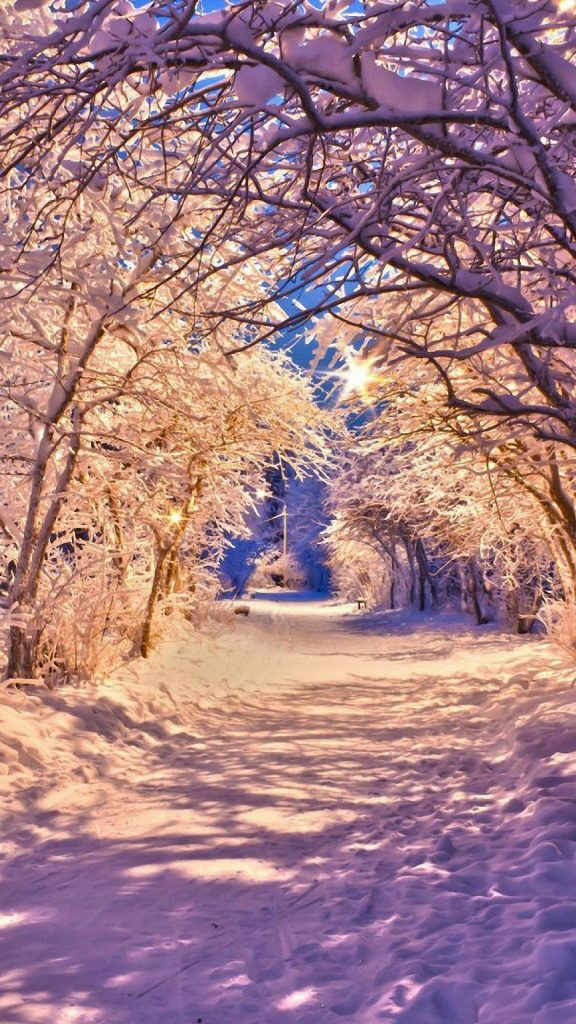winter-background-wallpaper-PIC-MCH0116816-576x1024 Winter Season Full Hd Wallpapers 43+
