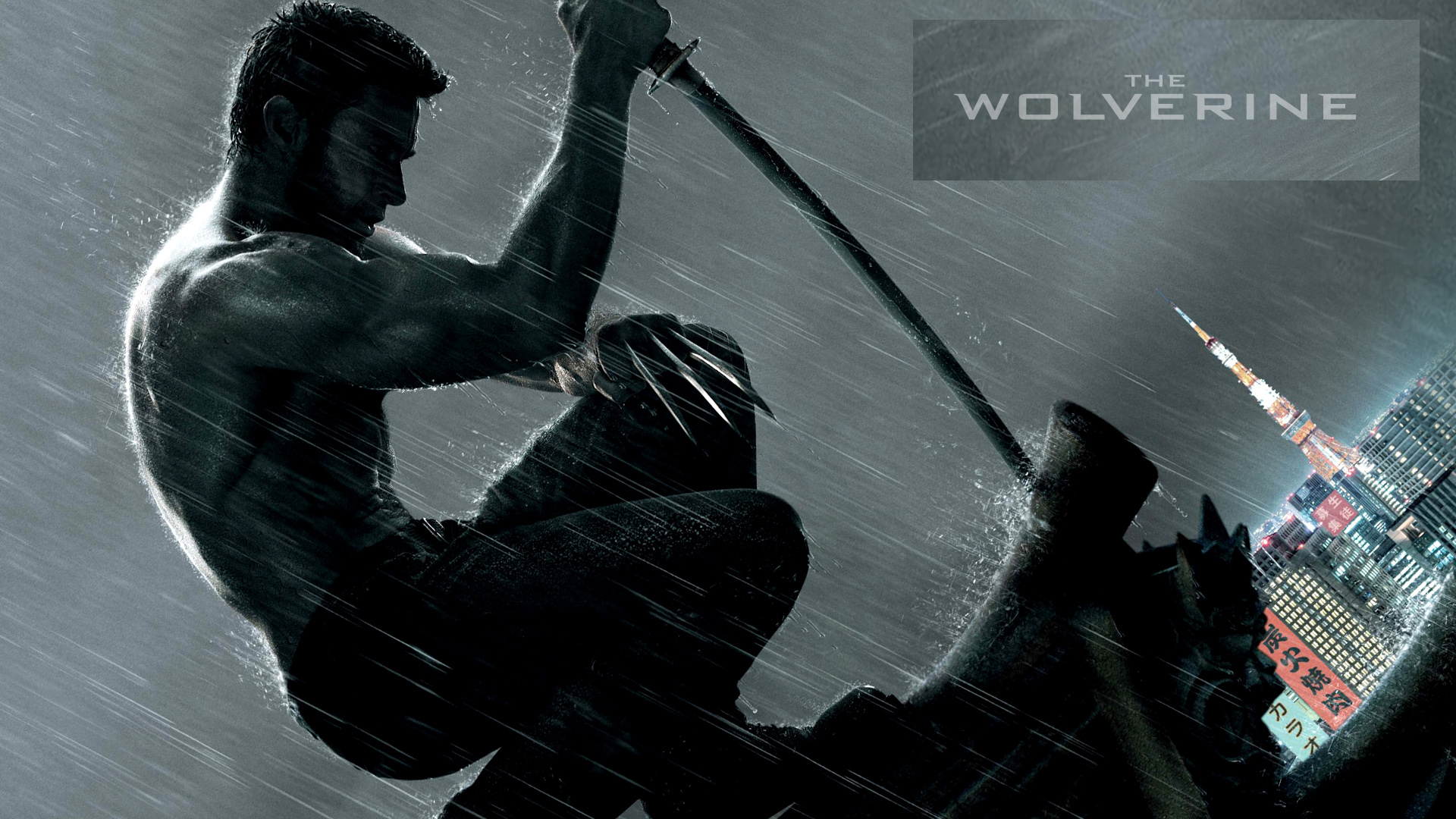 Wolverine Hd Wallpapers P Images Pic Mch0117126 Dzbc Org