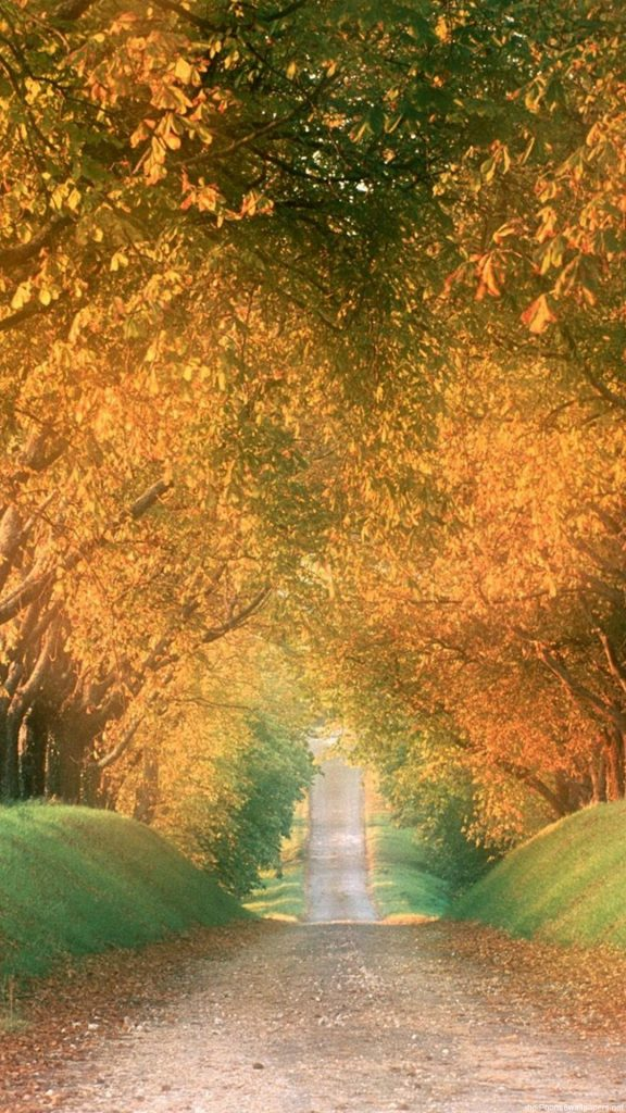 Autumn-Wallpaper-Iphone-HD-PIC-MCH042345-576x1024 Hd Autumn Wallpapers For Mobile 32+