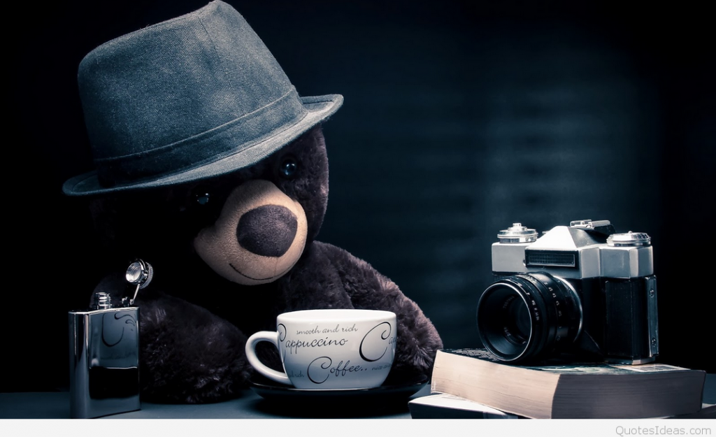 Funny-Teddy-Day-HD-Wallpaper-For-Desktop-PIC-MCH066965-1024x625 Best Wallpapers 2017 29+