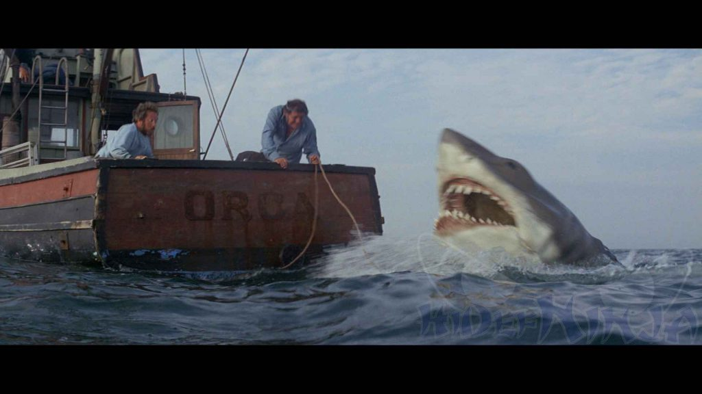 JAWS-PIC-MCH078447-1024x576 Jaws 1975 Wallpaper 24+