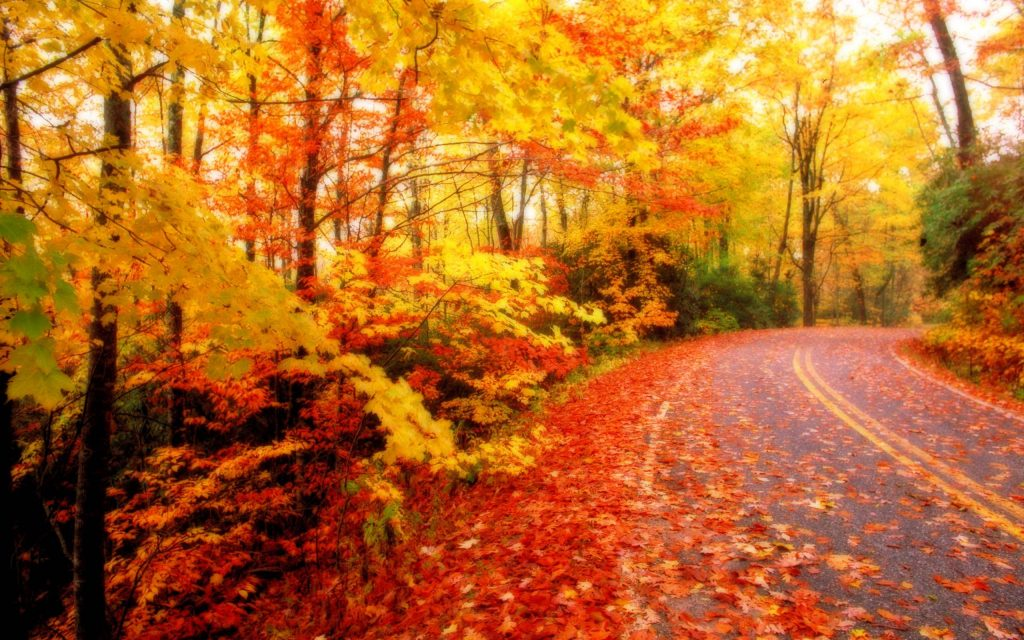 KEvYJe-PIC-MCH079910-1024x640 Hd Fall Wallpapers For Mac 35+
