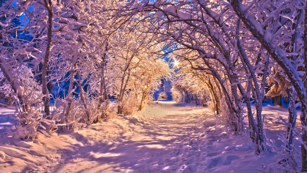 PIC-MCH025027-1024x576 Winter Wallpapers Hd 1920x1080 40+