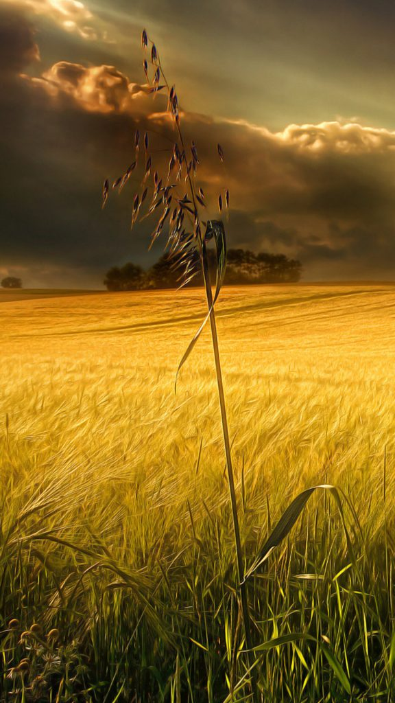 PIC-MCH03549-576x1024 Country Wallpapers For Your Phone 33+