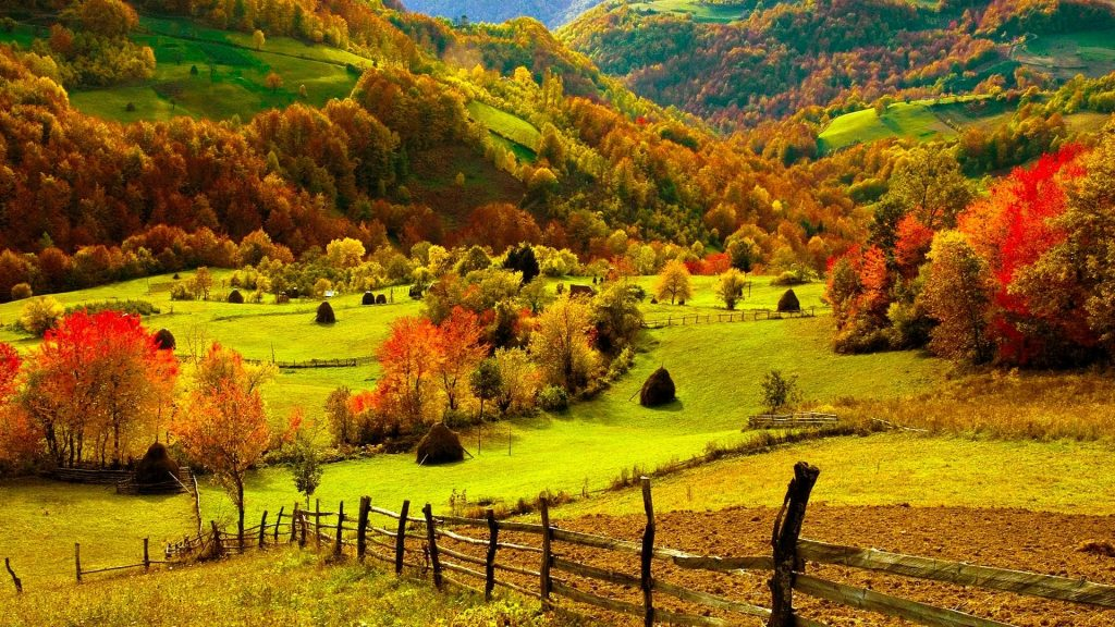 PIC-MCH05927-1024x576 Hd Fall Wallpapers Iphone 31+
