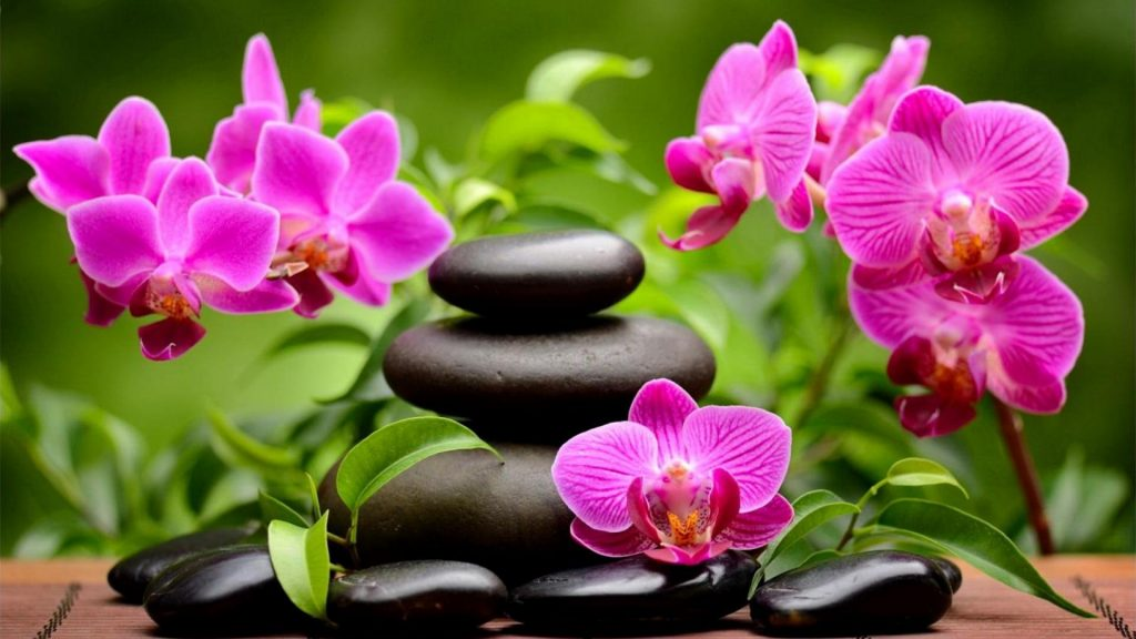 Spa-orchids-HD-Wallpaper-x-PIC-MCH0103075-1024x576 Hd Spa Wallpapers 1920x1080 36+