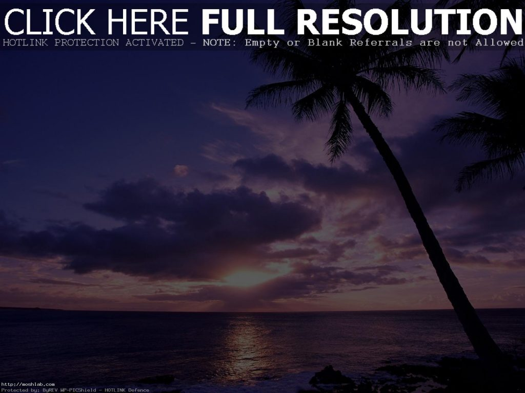Tahitian-Paradise-Beach-Travel-Wallpaper-Skyline-Free-Download-For-Desktop-Mobile-PIC-MCH0105556-1024x768 Wallpapers Paradise Beach 38+