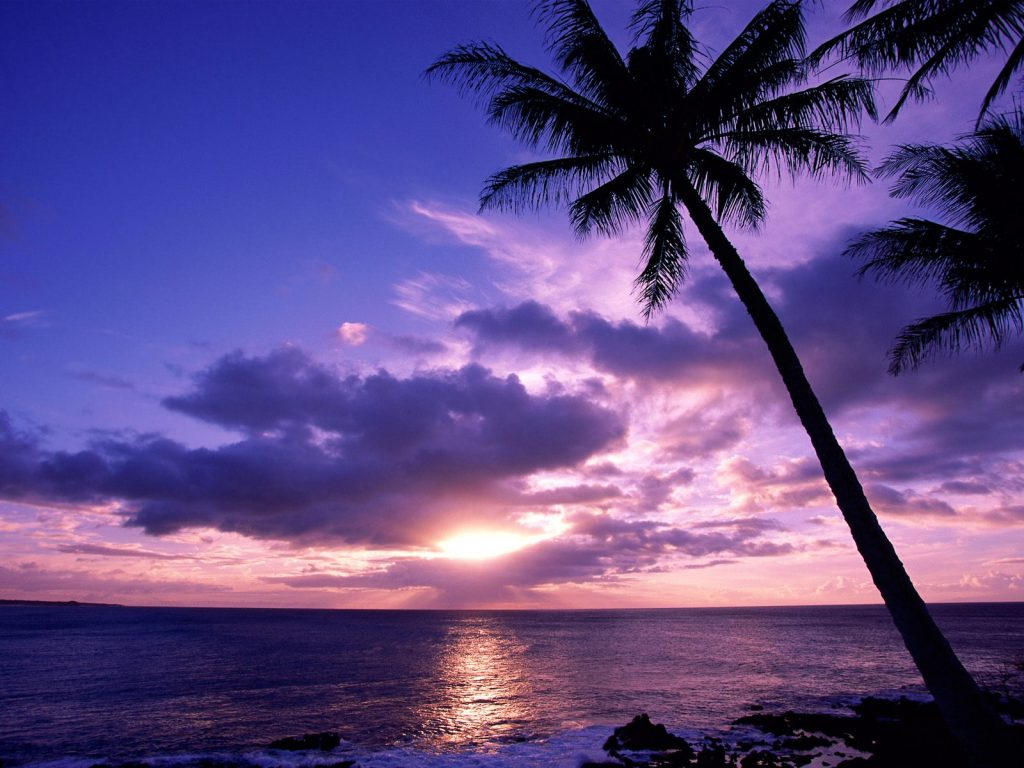Tahitian-Paradise-PIC-MCH0105555-1024x768 Paradise Wallpapers Free 38+