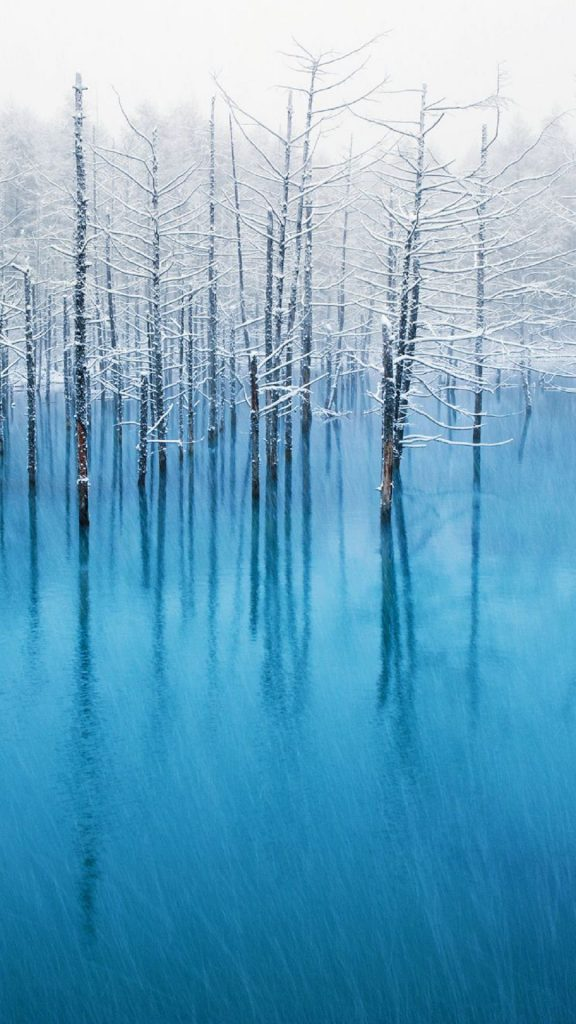 Winter-Trees-Lake-Android-Wallpaper-PIC-MCH0116803-576x1024 Winter Wallpapers For Android 27+