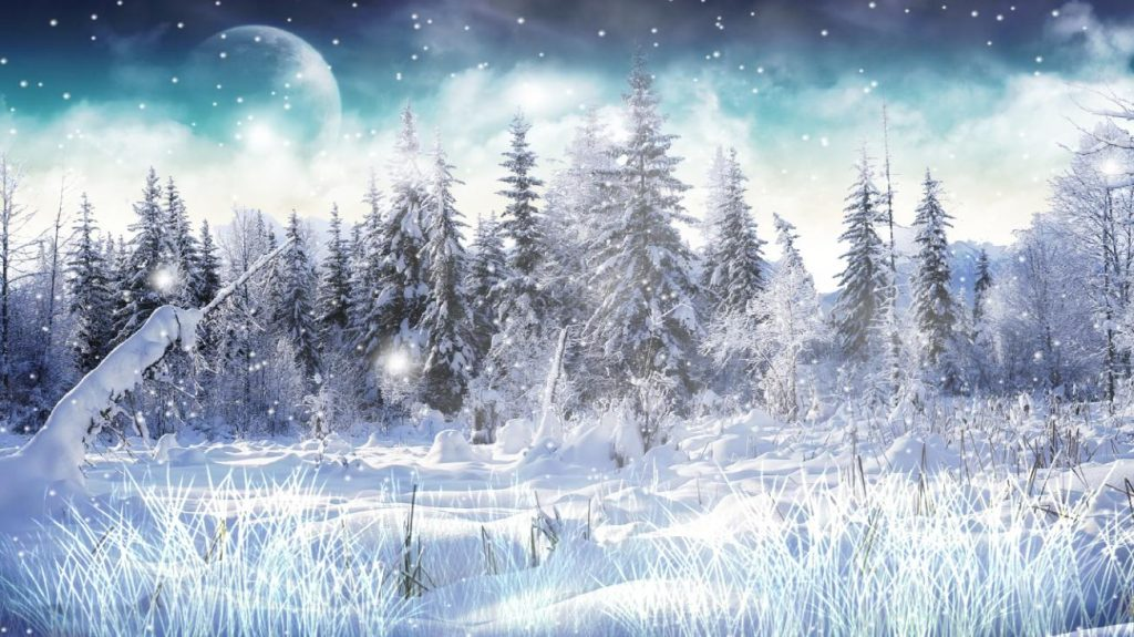 WinterSnow-PIC-MCH0117003-1024x575 Wallpaper Snowfall 40+