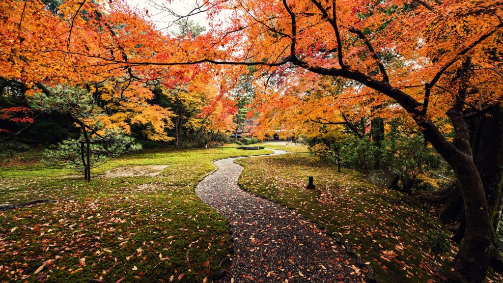 autumn-x-leaves-yoshikien-garden-japan-k-PIC-MCH042301-1024x576 Hd Autumn Wallpapers For Mobile 32+