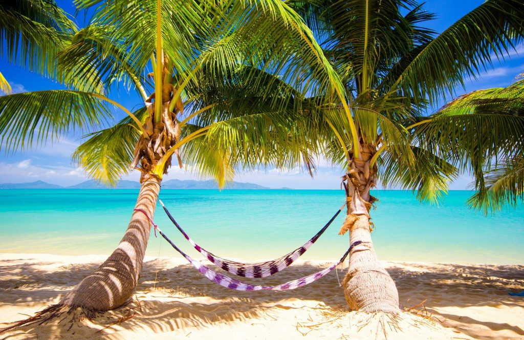 beaches-beach-paradise-ocean-palms-summer-tropical-sunshine-sea-nature-wallpaper-samsung-mobile-PIC-MCH044538-1024x664 Oceans Wallpaper Beach 44+