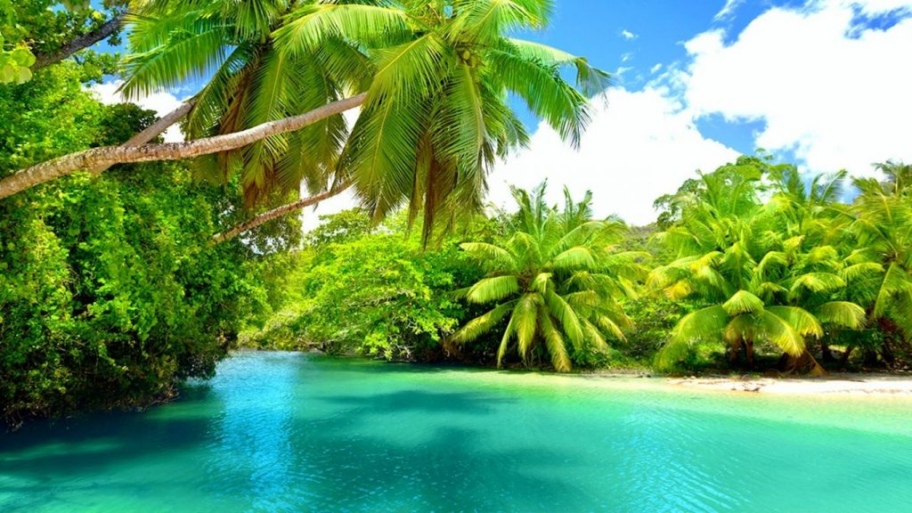 beaches-holidays-trees-palm-beautiful-water-mahe-island-paradise-turquoise-seychelles-clouds-summer-PIC-MCH044561-1024x576 Wallpapers Paradise Beach 38+